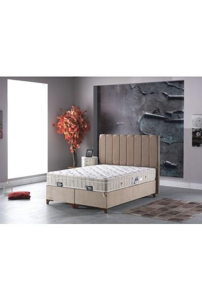 Sleep Comfort Pukka Yatak Baza Başlık Set 120x200