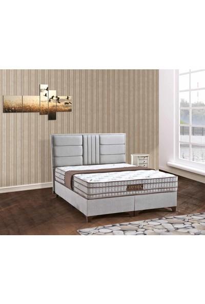 Sleep Comfort Safran Yatak Baza Başlık Set 160x200