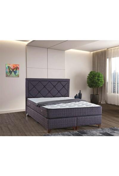 Sleep Comfort Melodi Yatak Baza Başlık Set 90x190