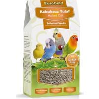 EuroGold Kabuksuz Yulaf Tohumu Kuş Yem Katkısı 300 gr