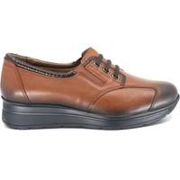 Forelli Rahat Hafif Kadın Ayakkabı 23802