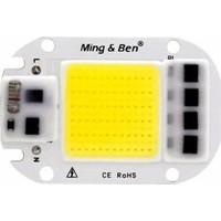 Rosh Led Cip 50W 220V Beyaz Projektör