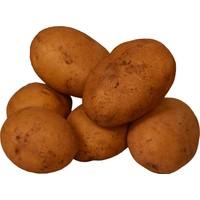Dört Mevsim Patates 1kg
