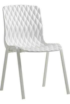 Novussi Sandalye