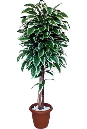 Dekoral Kestane Yapay Ağaç 170 cm