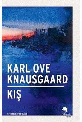 Kış - Karl Ove Knausgaard