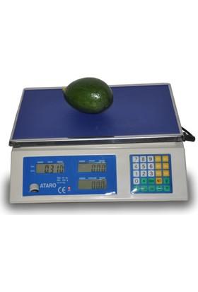 Portakal Burada Avokado Meyvesi - Finike den Büyük Boy(taze avakado meyve)