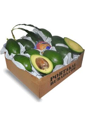 Portakal Burada Avokado Meyvesi Finike den 8' li (taze avakado meyve)