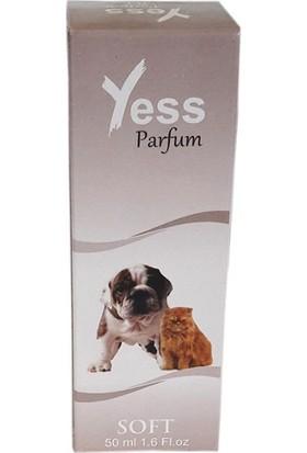 Ans Kedi Köpek Parfümü Soft Etkili Parfüm 50 Ml