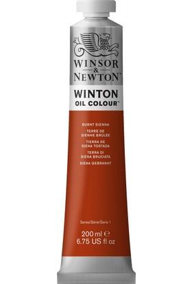 Winsor & NewtonWinton Yağlı Boya 200Ml Burnt Sienna 074 2