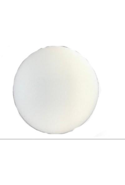 Befar Turkuaz Apklikatörlü .Sünger .150X45Mm Beyaz (B77101)