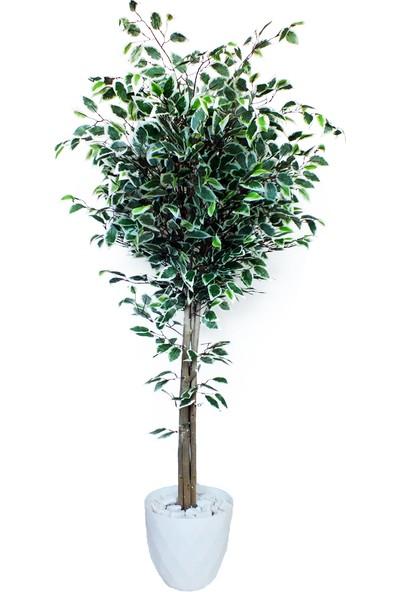 Dekoral Ficus Benjamin Yapay Ağaç 150 cm