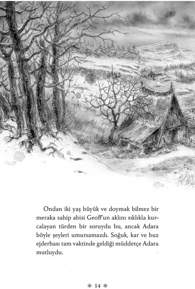 Buz Ejderhası - George R. R. Martin