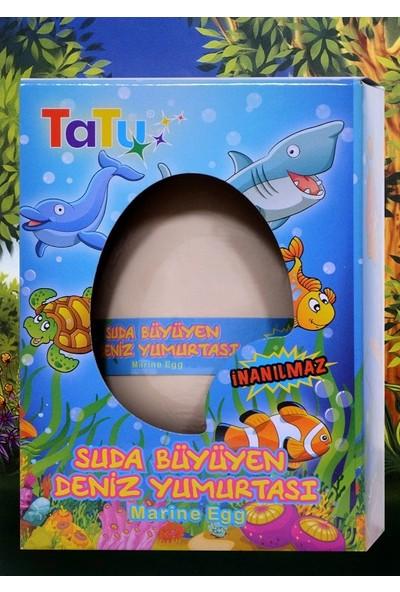 Tatu Marine Egg Deniz Yumurtası