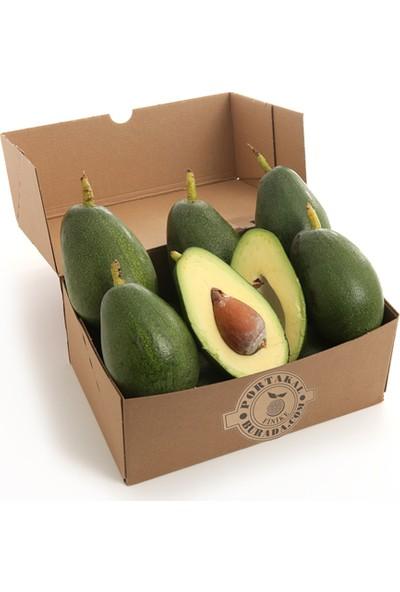 Portakal Burada Avokado Meyvesi Finike den 20' li (taze avakado meyve)