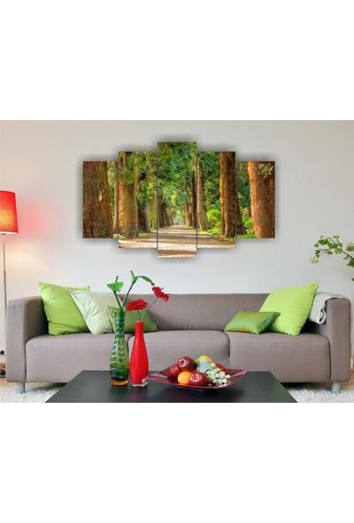 7Renk Dekor Yeşil Orman Yolu Dekoratif 5 Parça Mdf Tablo