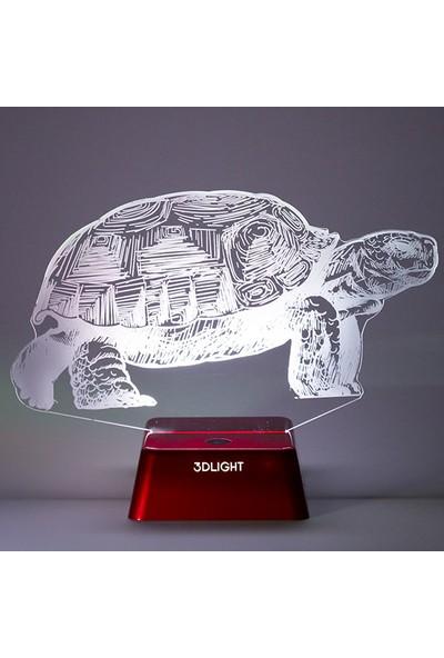 3D Light Kaplumbağa 3D Lamba