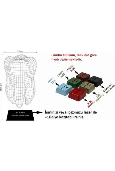 3D Light Dent 3D Lamba