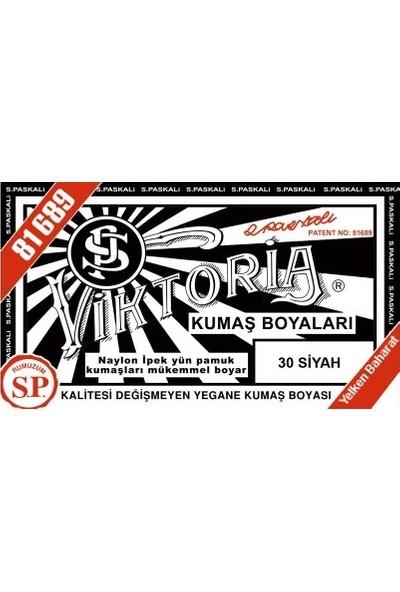 Viktoria Kumaş Boyası Siyah 2Pk+Fiske Sabitleme 1Pk