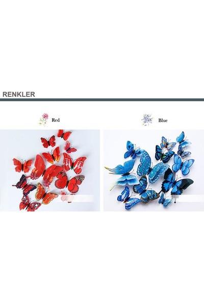 New Fly Duble Çift Katman Kanatlı Yeni Desen 3D Üç Boyutlu Kelebekler