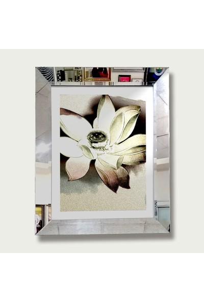 Vegacam Aynalı Resim Çerçevesi 50x70