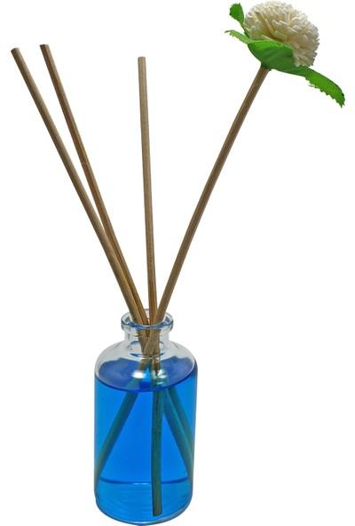 Paradise 50 ml Bambu Oda Parfümü Çam