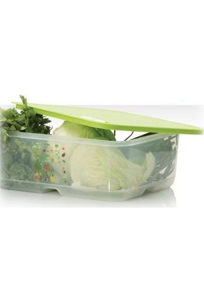 Tupperware Sera 9.9 Litre Yeşil Saklama Kabı