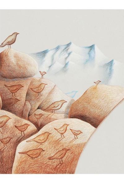 Kuş Masalları - Şermin Yaşar