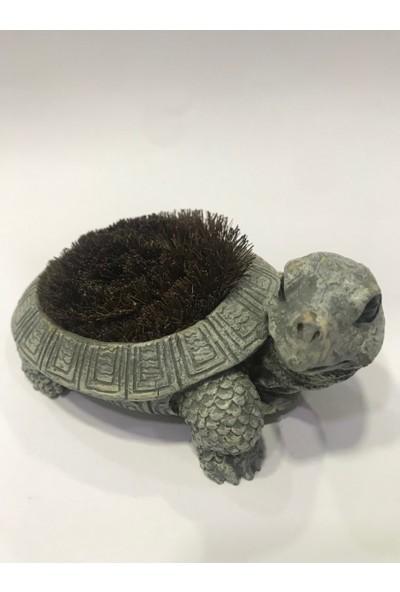 Krc Sevimli Kaplumbağa Biblo