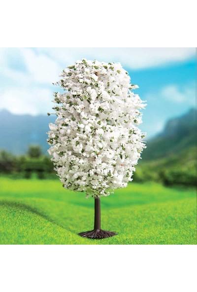 Eshel Maket Beyaz Dağ Çamı 10cm - 2'li
