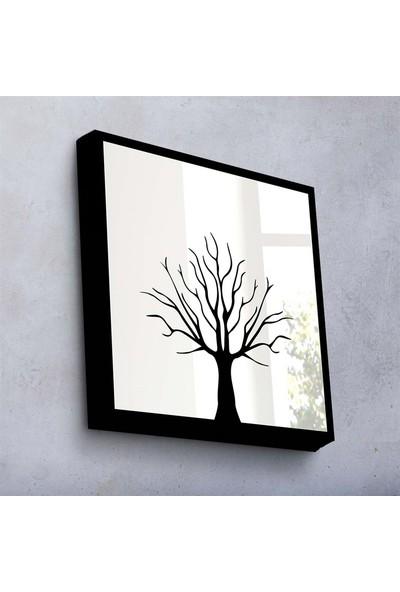 Özgül Grup Tasarım Aynalar