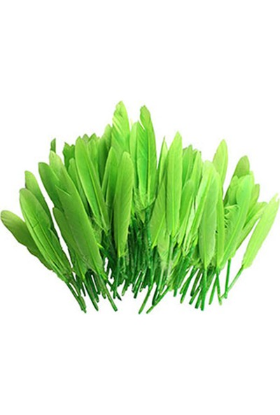 Tek Tüy Yeşil
