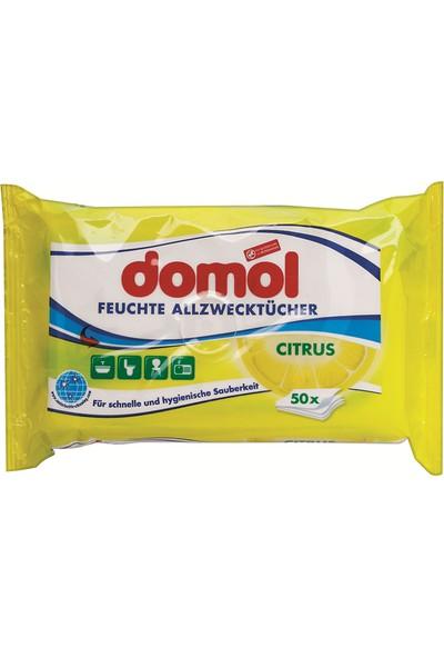 Domol 50'Li Limon Kokulu Genel Amaçlı Bez / Mendil
