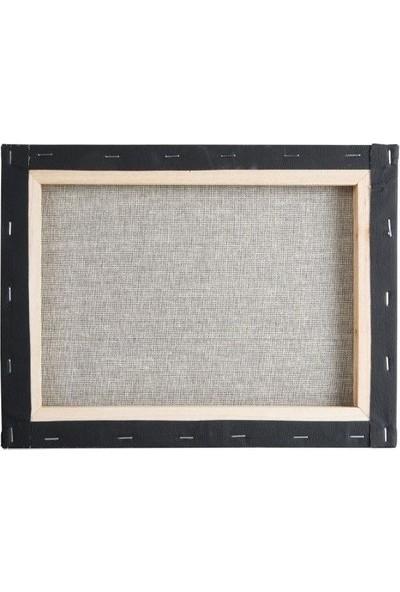 CREART 35X50 cm Siyah Tuval
