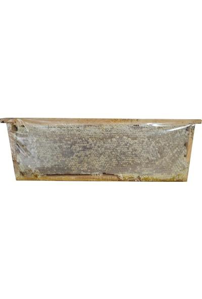 Kastamonu Petek Çiçek Balı 500 gr