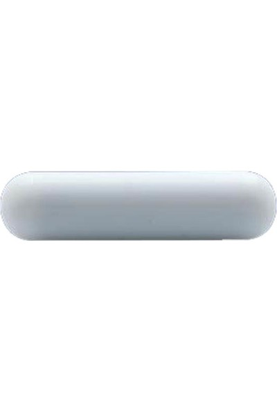 Ningbo Manyetik Balık - 80 X 10 mm