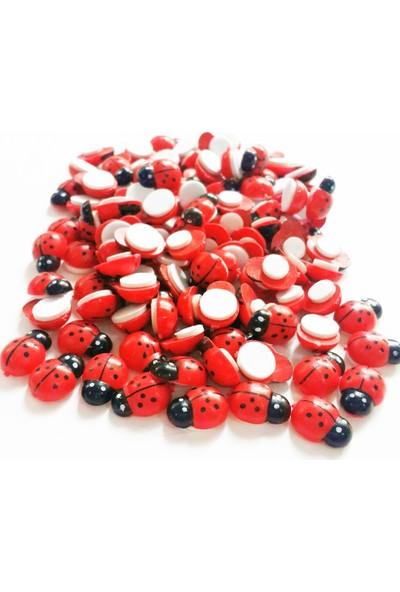Byozras Yapışkanlı Ahşap Uğur Böceği Kırmızı 50 li Paket