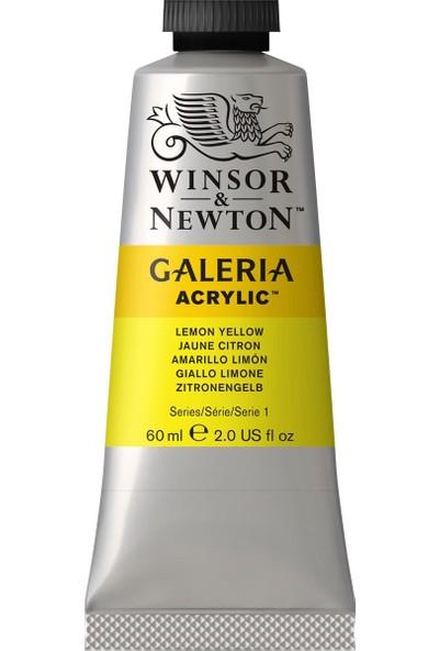 Winsor & NewtonGaleria Akrilik Boya 60Ml Lemon Yellow Hue 346