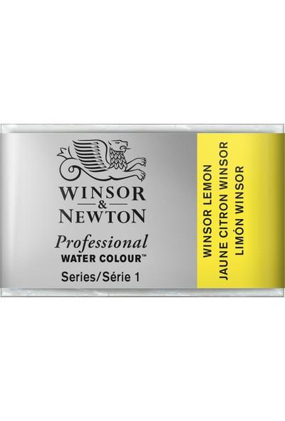 Winsor & NewtonProfessional Sulu Boya Tam Tablet W.Lemon 722 S.1