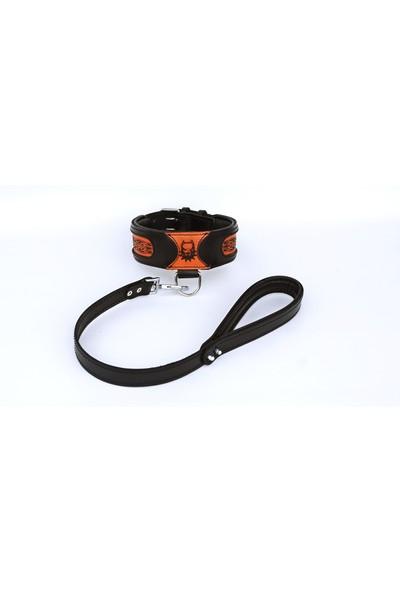Ac Leather Deri Köpek Boyun Tasması - Sevk Kayışı