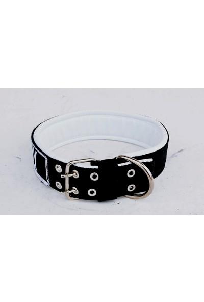 Ac Leather Köpek Boyun Tasması Kolon