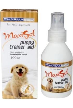 Maxisol Yavru Köpekler İçin Tuvalet Eğitim Spreyi 100 cc