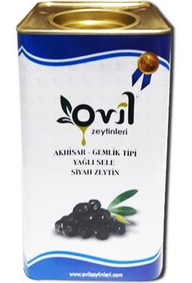 Ovil Siyah Zeytin Gemlik Tipi Yağlı Sele 381-420 kB 5 kg