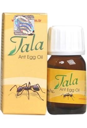 Tala Karınca Yumurtası Yağı 3' lü