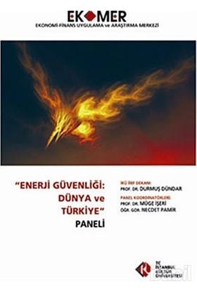 Enerji Güvenliği: Dünya Ve Türkiye Paneli 2010-Kolektif