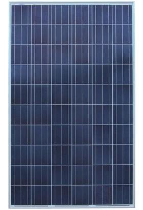 165 Watt Güneş Paneli