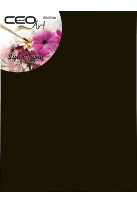 Ceo Art Tuval Siyah 35*50 Ceo-0009