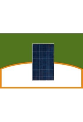Yingli Yl250P-29B 60 40Mm Hücre Serisi Solar Güneş Paneli 250W