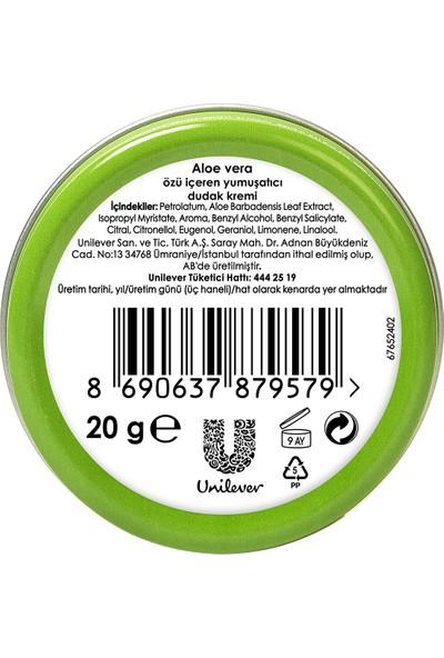 Vaseline Dudak Nemlendirici Aloe Vera 20 gr