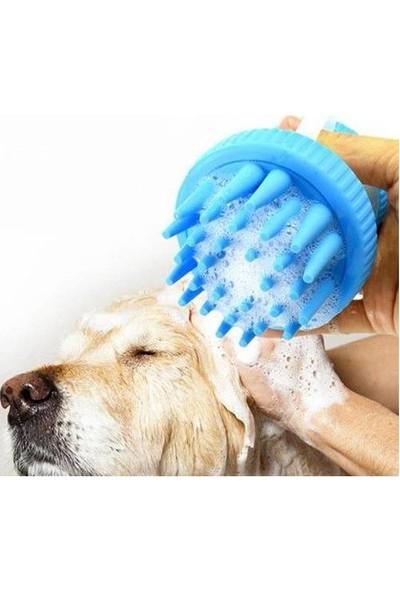 Petzoom Şampuan Hazneli, Silikon Uçlu Köpek Yıkama Fırçası